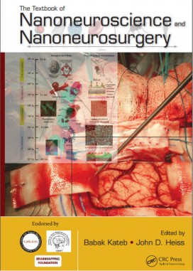 The Textbook of Nanoneuroscience and Nanoneurosurgery 1st Edition