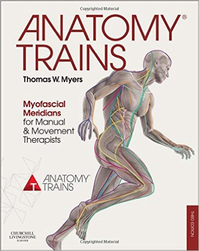 Anatomy Trains: Myofascial Meridians for Manual and Movement Therapists, 3e 3rd Edition