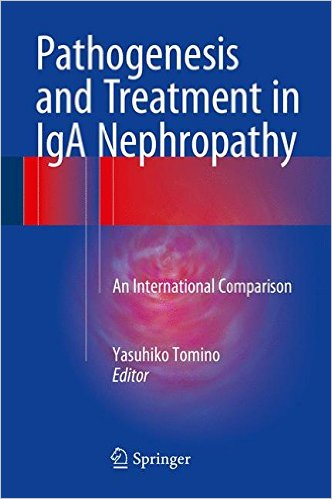 Pathogenesis and Treatment in IgA Nephropathy: An International Comparison 1st ed. 2016 Edition