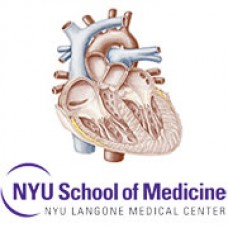 Comprehensive Cardiology Seminar and Board Review Course (NYU) 2015 (CME Videos)