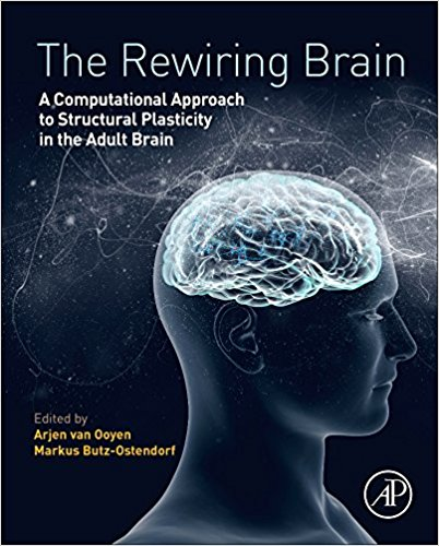 The Rewiring Brain: A Computational Approach to Structural Plasticity in the Adult Brain 1st Edition PDF