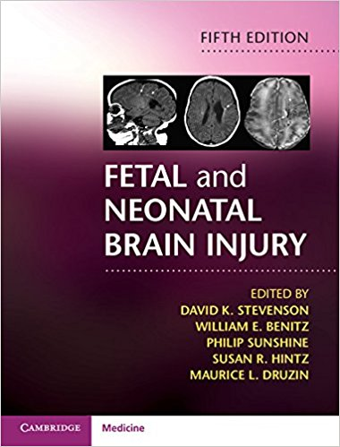 Fetal and Neonatal Brain Injury 5th Edition PDF