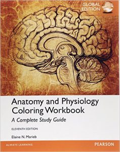 Anatomy and Physiology Coloring Workbook A Complete Study Guide ...