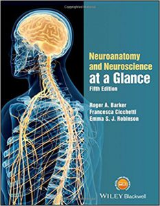 Neuroanatomy and Neuroscience at a Glance 5th Edition PDF