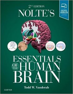 Nolte's Essentials of the Human Brain, 2nd edition PDF