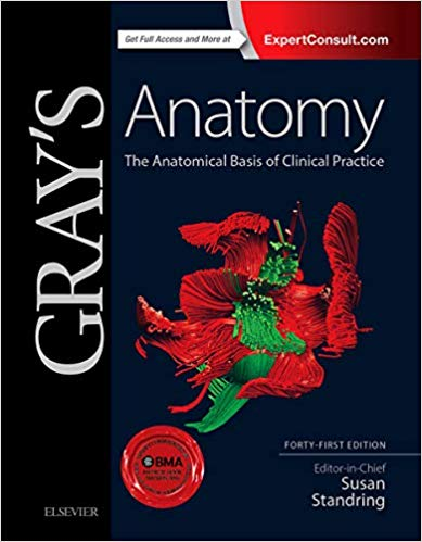 Brs Gross Anatomy Board Review Series