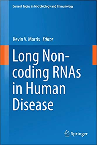 Long Non-coding RNAs in Human Disease (Current Topics in Microbiology and Immunology Book 394) 1st ed. 2016 Edition