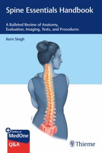 Spine Essentials Handbook: A Bulleted Review of Anatomy