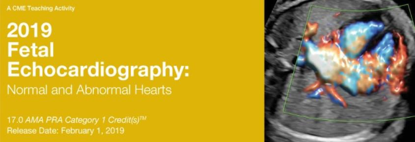 2019 Fetal Echocardiography: Normal and Abnormal Hearts - A Video CME Teaching Activity